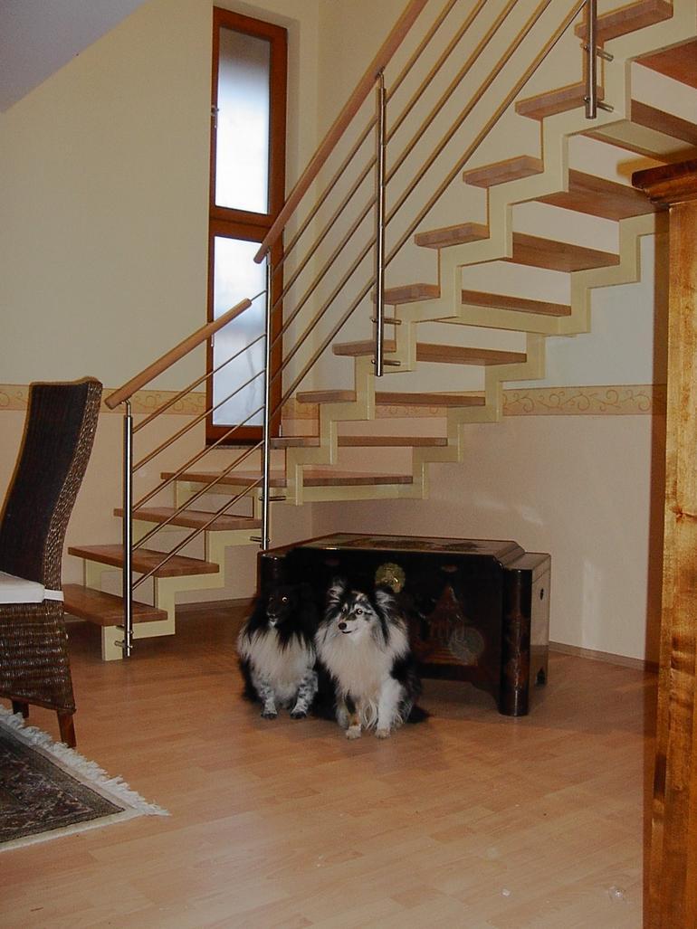 wohnraum treppe 2 treppen leistungen edelstahl und metallbau schlosserei balsmeier. Black Bedroom Furniture Sets. Home Design Ideas